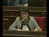 Депутат парламента Армении Маргарита Есаян задала вопросы Гагику Джангиряну 26 февраля 2014 года